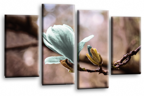 Floral Flower Wall Art Picture Grey Duck Egg Spring Print